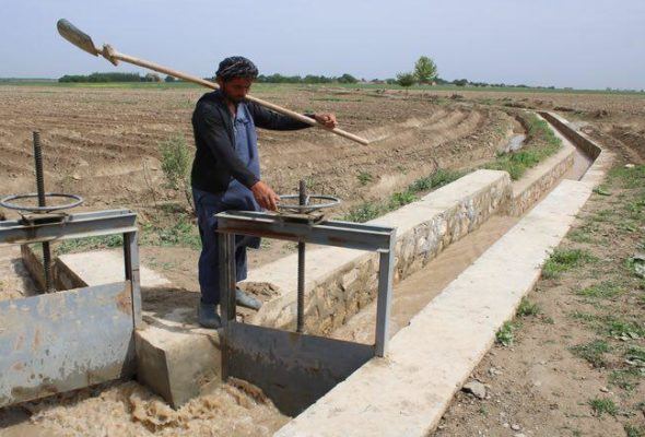 How a New Irrigation Canal in Balkh is Helping Farmers Fix Irrigation Leaks and Water Wastage