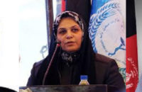 Elected Faces of Afghan House of Representatives (25): The Path of 3 Representatives from Panjshir, Laghman and Nangarhar