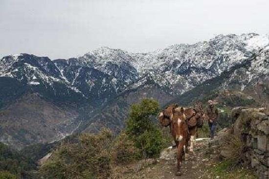 Water Insecurity Rising in Hindu Kush Himalayan Region: Study