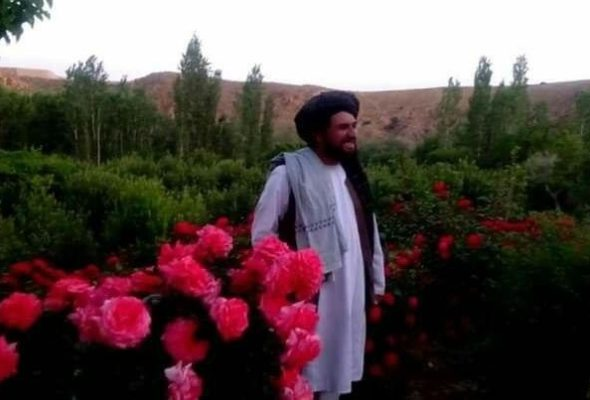 Taliban Shadow Governor For Wardak Province Killed by Afghan Forces