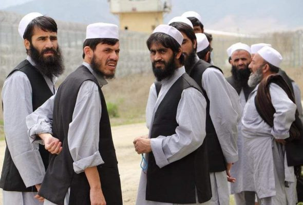 55 More Taliban Prisoners Released Amid Peace Efforts