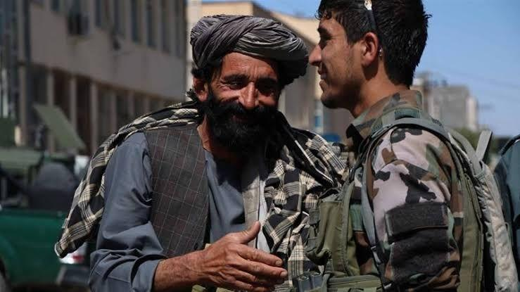 Afghan Human Rights Commission Calls for Extension of Ceasefire