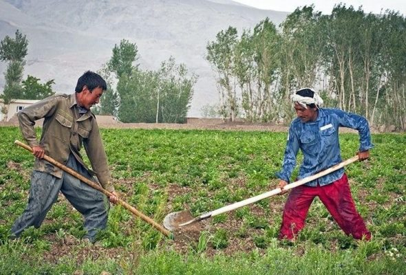 Continued Intl Support As World Bank Predicts 7.4% Contraction Of Afghan Economy