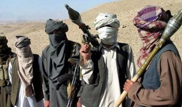 Released Taliban Prisoner Killed In Attack On Pato District In Daykundi