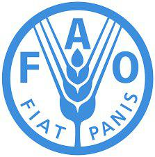 Agricultural Assistance for Food Security Severely Underfunded in Afghanistan: FAO