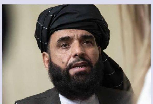 Taliban Says EU Peace Statement 'Violates Afghan Sovereignty'