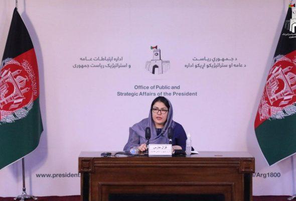 Ombudsperson: Ventilators Not Smuggled But Widespread Corruption In COVID-19 Budget