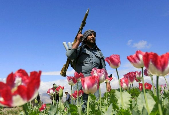 Taliban Could Become 'Impervious' To Pressure Due To Expanding 'Financial Power': RFE/RL