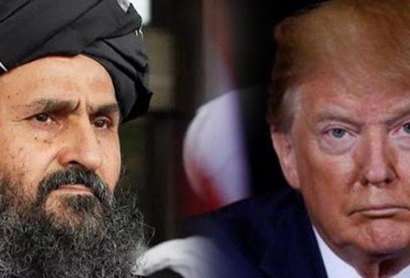 Trump Campaign Rejects Taliban Endorsement, Mujahid Says Comment Misinterpreted